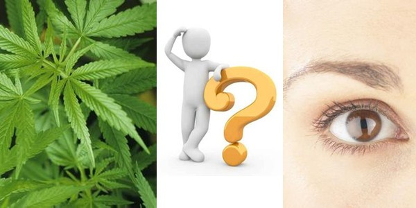 Marijuana May Prevent Blindness from Retinitis Pigmentosa