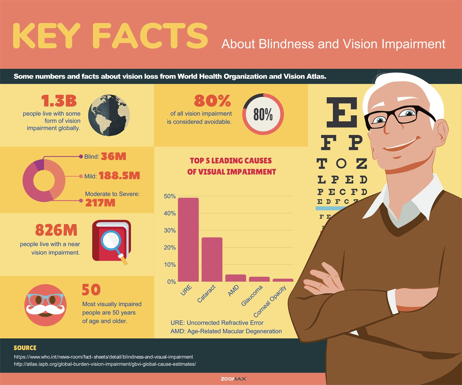Key Facts About Blindness and Vision Impairment -  Zoomax